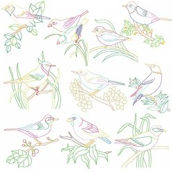 Colorful Vintage Birds Embroidery Design Bundle