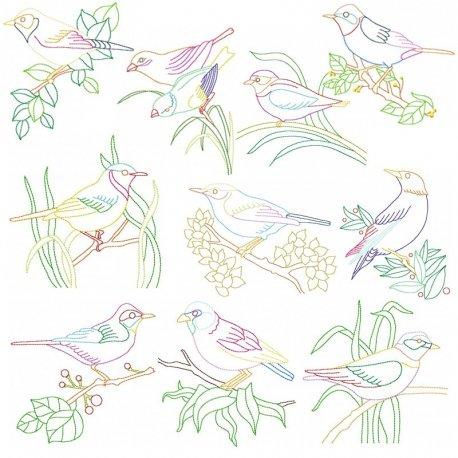 Colorful Vintage Birds In Redwork Stitch Embroidery Design Bundle