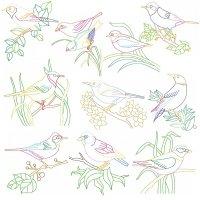 Colorful Vintage Birds Embroidery Design Bundle